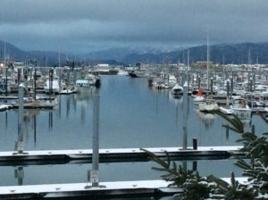 Winter King Salmon Tournament