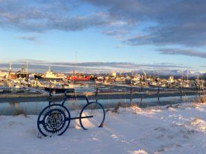 Winter 2020 Homer Harbor